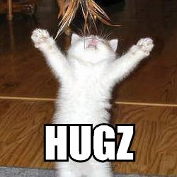 hugzz